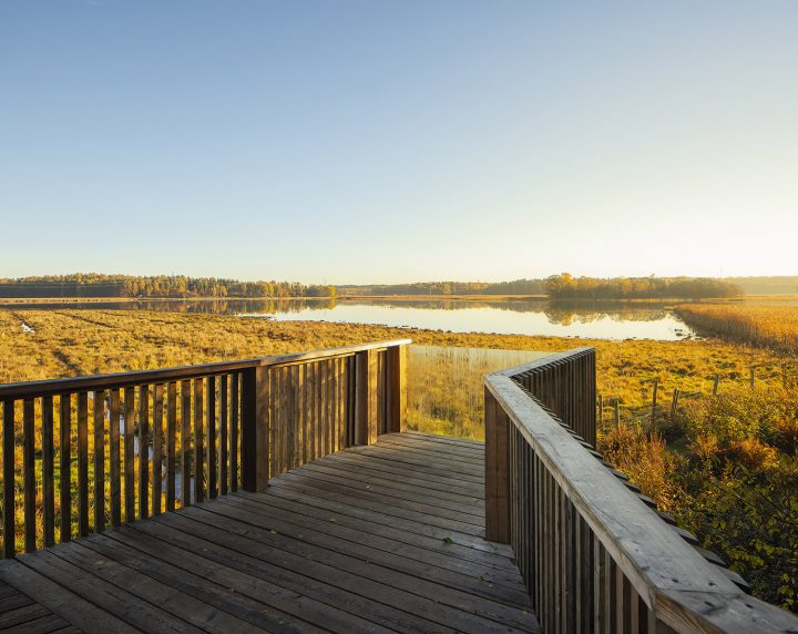 Observation deck, Lammassaari Boardwalk