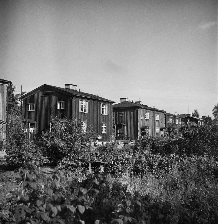 Pohjolankatu wooden houses and allotments in 1949, Puu-Käpylä Wooden House Area