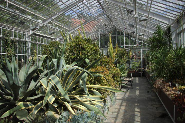 The interior, Winter Garden